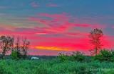 Clouded Sunrise P1410649-53