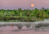Strawberry Moon Setting P1410810-6