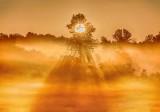 Ground Fog At Sunrise P1420144-50