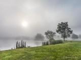 Morning Fog DSCN35581-3