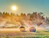 Bales & Ground Fog P1420767-73