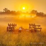 Disc Plow In Sunrise Ground Fog P1420725-31