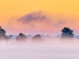 Ground Fog At Sunrise P1430341-3