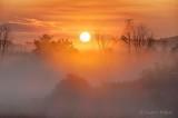 Sunrise Through Ground Fog P1440016-22