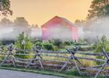 Red Barn In Sunrise Ground Fog P1440719-25