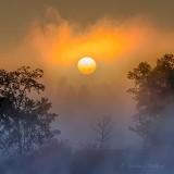 Sun Rising Through Ground Fog P1450207-3