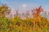 Belated Harvest Moon P1450386-92