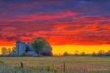 Barn In Fiery Sunrise P1450546-52