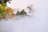 Edmonds Lock In Fog & Mist P1460461