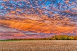 Interesting Autumnscape Sky At Sunrise P1470127-3