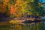 Autumnscape At Davis Lock P1460996