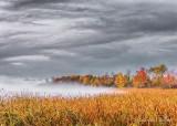 Misty Irish Creek Autumnscape DSCN02972-4