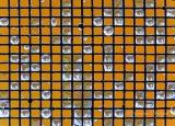 Wet Window Screen DSCN04077