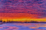 Frozen Irish Creek Sunrise P1480740-4