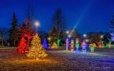 Calebration Of Lights 2019 (P1480794-00)