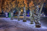 Celebration Of Lights 2019 (P1490407-13)