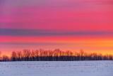 Wintry Sunrise Clouds P1490557