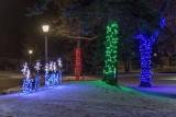 Celebration Of Lights 2019 (P1500010)