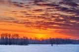 Winter Sunrise P1510268-74