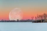 Moon Beyond Winterscape At Sunrise P1510548-54