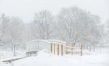 New Footbridge In Snowstorm P1510758-64