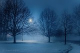 Blue Hour Fog P1520116-22