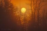 Rising Sun Through Fog P1520298-04