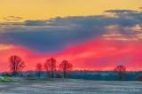 Fiery Sunrise Color P1530636-42
