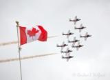 CF Snowbirds Arriving 29205