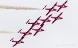 CF Snowbirds Flying Over 49587 (crop)