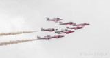CF Snowbirds Flying By 49585