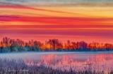 Misty Irish Creek At Sunrise P1540043-9