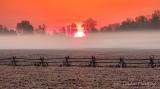 Ground Fog At Sunrise DSCN18469-71