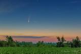 Comet NEOWISE Over Moonlit Cornfield P1540829