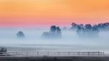 Sunrise Ground Fog Beyond Fence P1550073