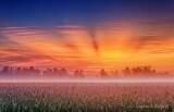 Crepuscular Rays Over Ground Fog DSCN29001-3
