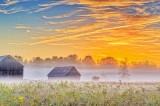 Farm Buildings & Ground Fog At Sunrise P1550606-12