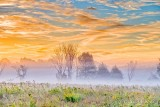 Sunrise Ground Fog P1550613