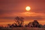 Sunrising Above Cloud P1560038-44