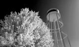 Autumn Water Tower (faux IR) DSCN34153