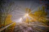 Autumn Old Slys Road In Night Fog P1560480-6