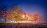 Autumn Lower Reach Park On A Foggy Night P1560499-05