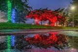 2020 Celebration Of Lights Reflection P1570810-4
