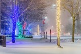 Beckwith Street In Snowfall At Night P1580712-8