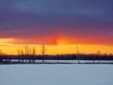 Sundog At Sunrise DSCN47115