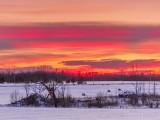 Winter Sunrise DSCN47470