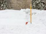 Fire Hydrant In Snowbank DSCN48442