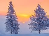 Frosty Misty Sunrise DSCN48607-9