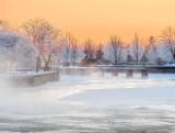 Frosty Trees & Mist At Sunrise DSCN48877-9