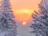 Frosty Misty Sunrise DSCN48601-3